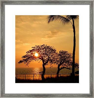 Orange Sunset Framed Print by Pamela Walton