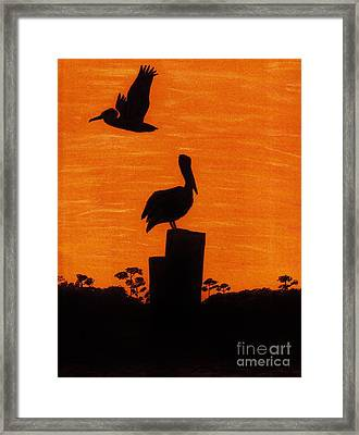 Orange - Sunset - Pelicans Framed Print