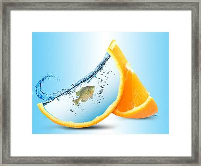 Orange Surprise Framed Print