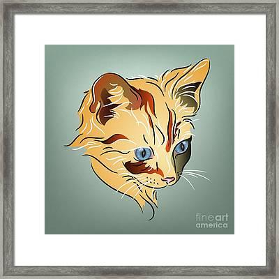 Orange Tabby Kitten Framed Print