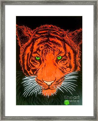 Orange Tiger Framed Print