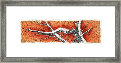 Framed Print featuring the mixed media Orange Tree by Tim Oliver