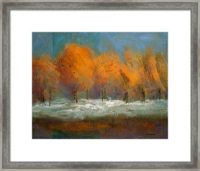 Orange Trees Framed Print by Bob Pennycook