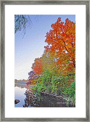 Orange Trees Framed Print by Nur Roy