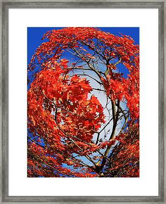 Orange Twirl -2 Twin Framed Print