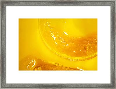 Orange With Ice And A Slice Framed Print