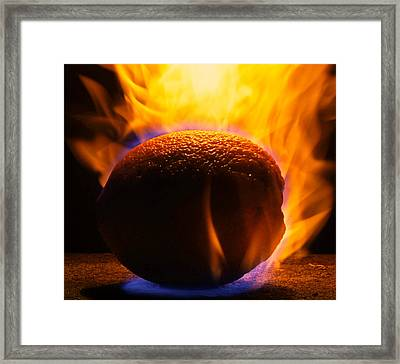 Orange You Glad Framed Print