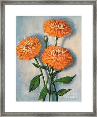 Framed Print featuring the painting Orange Zinnias by Randol Burns