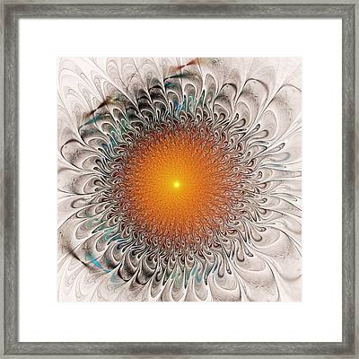 Orange Zone Framed Print by Anastasiya Malakhova