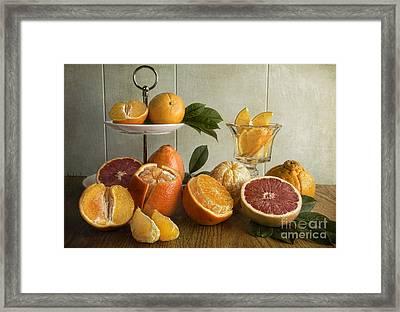 Orangeade Framed Print by Elena Nosyreva