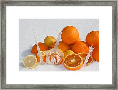 Oranges And Lemons On Snow Framed Print