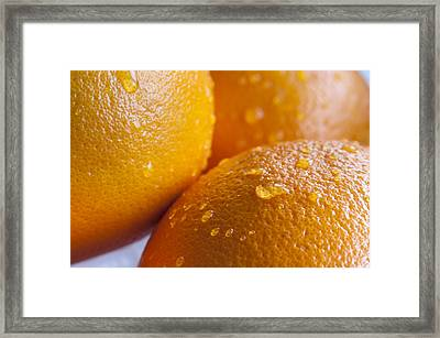 Oranges Framed Print by Andrew Campbell