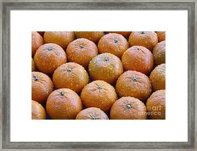 Oranges Framed Print by James BO  Insogna