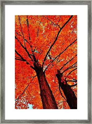 Orange...the New Green Framed Print