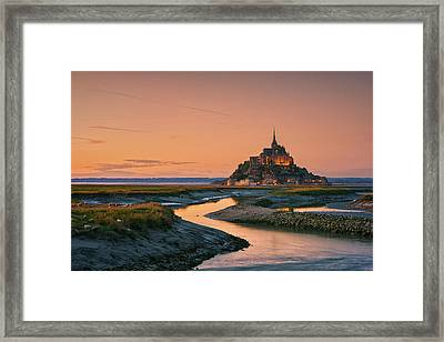 Orangine Framed Print