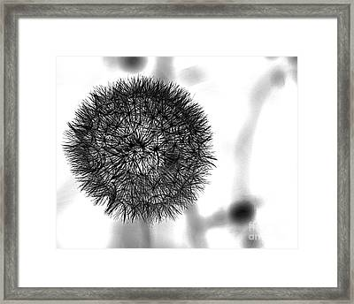 Orb Framed Print by A K Dayton