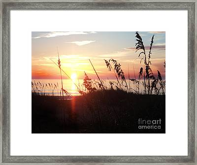 Orb Of Day Framed Print by Megan Dirsa-DuBois