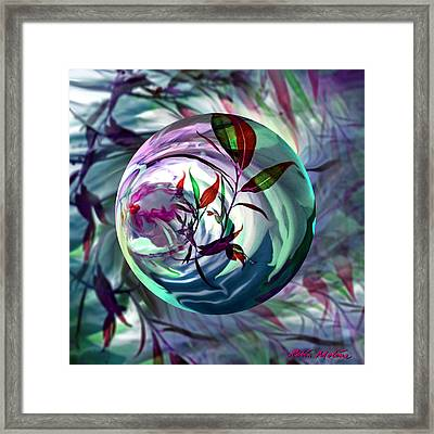 Orbiting Cranberry Dreams Framed Print by Robin Moline