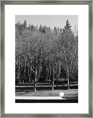 Framed Print featuring the photograph Orbitus Minimus by Marie Neder