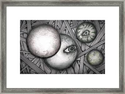 Orbs 2013 Framed Print by Dan Twyman