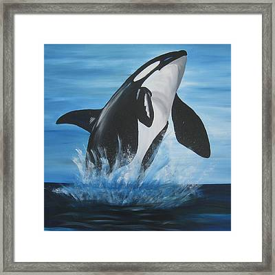 Orca Framed Print by Cathy Jacobs