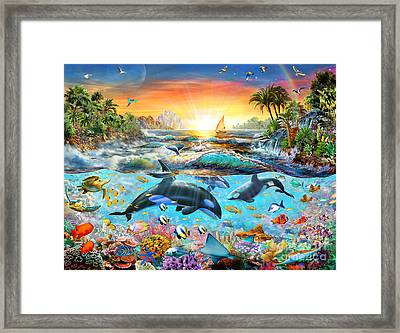 Orca Paradise Framed Print by Adrian Chesterman