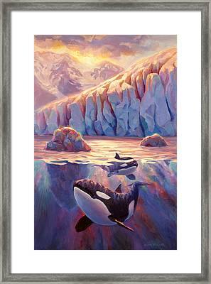 Orca Sunrise At The Glacier Framed Print by Karen Whitworth