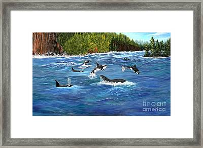 Framed Print featuring the painting Orcas by Myrna Walsh
