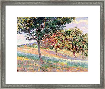 Orchard At St Cheron Framed Print by Jean Baptiste Armand Guillaumin