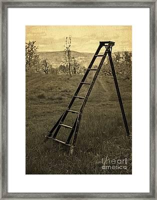 Orchard Ladder Framed Print
