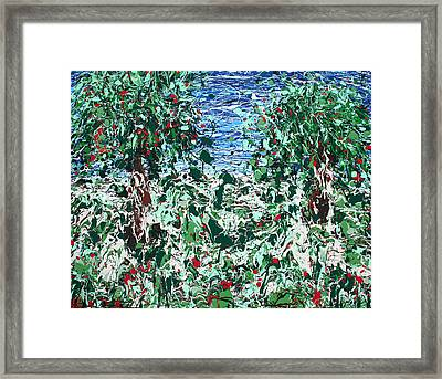 Orchard Number Five Framed Print by Ric Bascobert