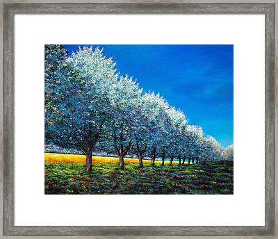 Orchard Row Framed Print
