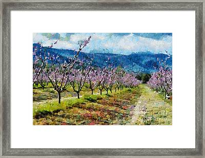 Orchard Views Framed Print by Fran Woods