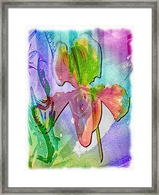 Orchid Burst Framed Print by Jill Balsam