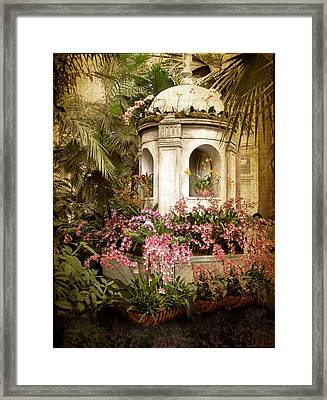 Orchid Exhibition Framed Print