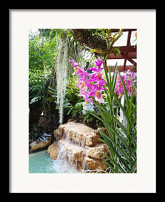 Garden Key Framed Prints