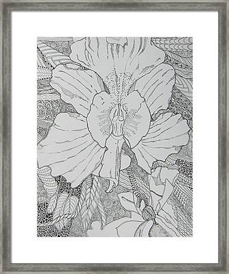 Orchid In Disguise Framed Print