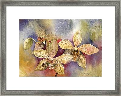 Orchid In Yellow Framed Print by Alfred Ng
