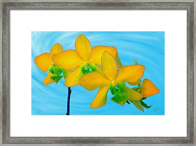 Orchid In Yellow Framed Print by Ben and Raisa Gertsberg