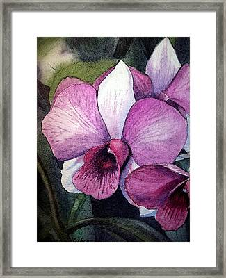 Orchid Framed Print by Irina Sztukowski