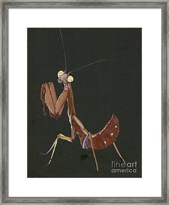 Orchid Mantid Framed Print