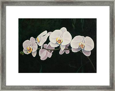 Orchid Melody Framed Print by Pam Kaur