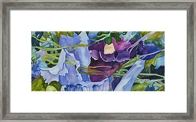 Orchid Rhapsody Framed Print