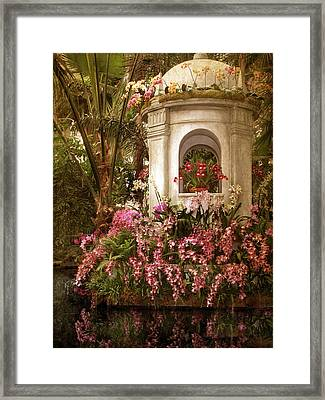 Orchid Show Framed Print by Jessica Jenney