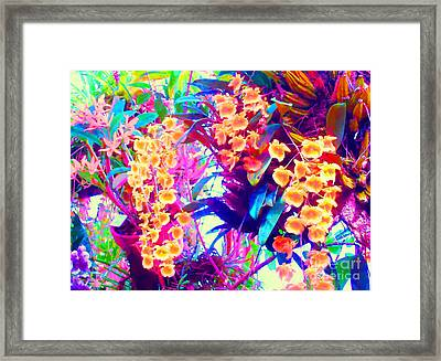 Orchid Splash Framed Print by Ann Johndro-Collins