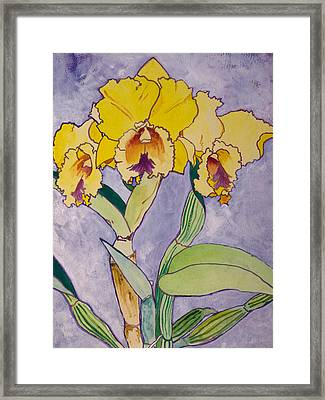 Orchid Study Framed Print