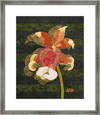 Orchids #1 Framed Print by Lynda K Boardman