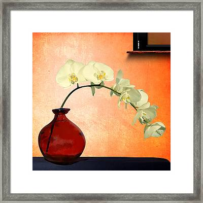 Orchids 2 Framed Print by Mark Ashkenazi