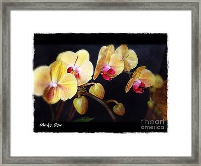 Orchids Arise Framed Print