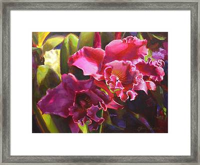 Orchids In Magenta Framed Print